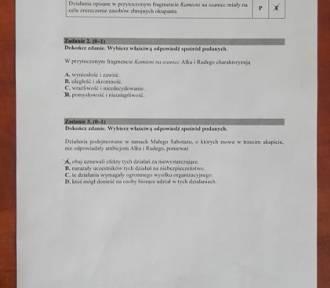 Egzamin gimnazjalny 2019 z j. polskiego: ODPOWIEDZI i ARKUSZ CKE