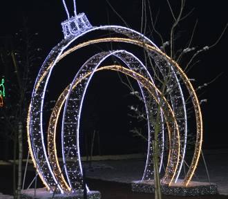 Rozświetlone Lipce Reymontowskie w zimowej odsłonie. Pomimo mrozu jest urokliwie