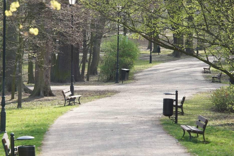 Park miejski w Kaliszu znów będzie otwarty dla mieszkańców. Przyroda już na Was czeka