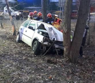Na S1 w Dąbrowie Górniczej samochód wypadł z drogi i uderzył w drzewo [ZDJĘCIA]. Kierowca trafił
