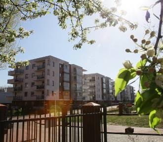 Mieszkania do wynajęcia tanieją. Najbardziej w Częstochowie, Lublinie i Sosnowcu