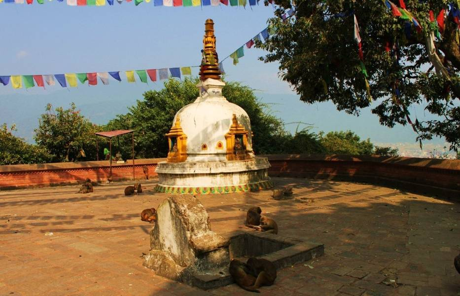 W skład świątynnego kompleksu wchodzi stupa, kilka małych świątyń, sanktuarium, klasztor tybetański, biblioteka i muzeum