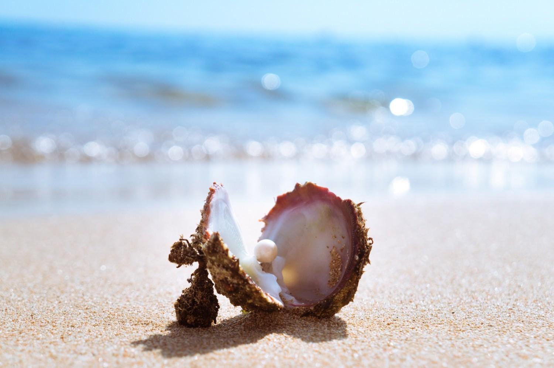 PerłyPerły, czyli wytwory małży, zbudowane są z tej samej substancji co wewnętrzna strona muszli