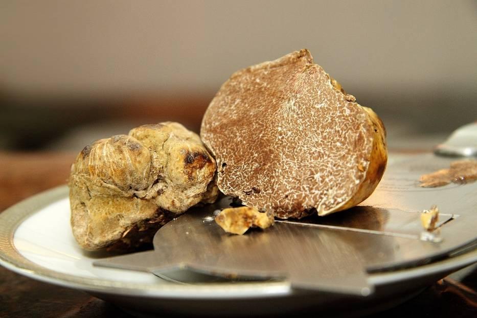 TrufleTrufle, szczególnie zaś białe, uznawane są za najdroższe grzyby świata