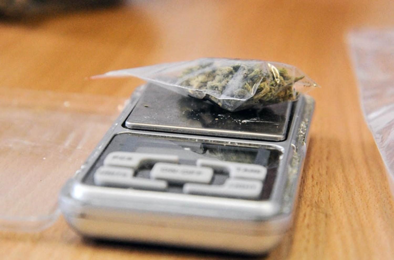 W niedzielę, 19 sierpnia, dzielnicowi z Żar podczas interwencji w jednym z mieszkań, znaleźli dwa kilogramy marihuany i 15 krzaków konopi