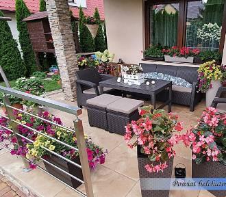 Najpiękniejsze balkony i tarasy w powiecie bełchatowskim. Zobacz zdjęcia czytelników
