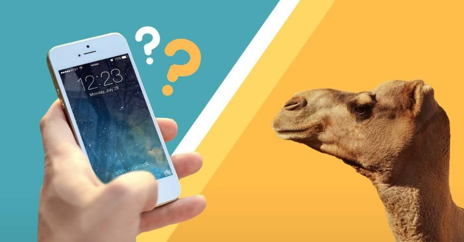 Nie uwierzysz, co można kupić za równowartość nowego Iphone'a!