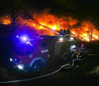 Pożar składowiska śmieci we Wrocławiu. Nadal trwa akcja straży. Są ranni [ZDJĘCIA I FILMY]