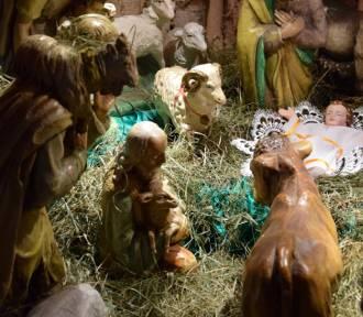 Bożonarodzeniowe szopki w człuchowskich parafiach