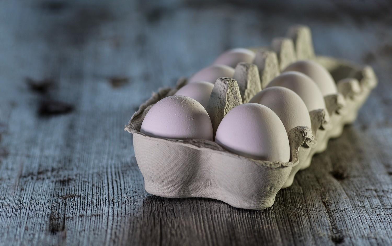Jaja skażone pałeczkami salmonelli