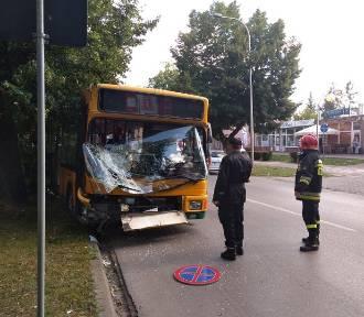 W Ostrowcu autobus uderzył w drzewo. Wyglądało groźnie