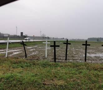 Kilkadziesiąt krzyży stanęło przy skrzyżowaniu w gminie Rusiec.  Po co je ustawiono?