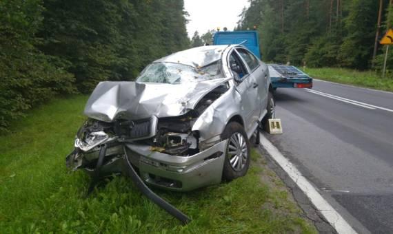 Zderzenie samochodu z łosiem na DK65. Dwie osoby w szpitalu [ZDJĘCIA]