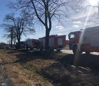 Wola Jabłońska: BMW rozbiło się o drzewo [ZDJĘCIA]