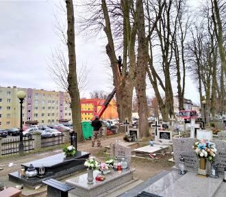 Wichura - w Darłowie pękło drzewo na cmentarzu [ZDJĘCIA] - 22.02.2020 r.