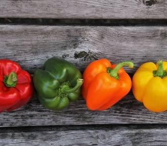 Targi Czytaj Skład 2018. Kiedy, gdzie, harmonogram targów promujących świadomy wybór żywności