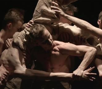 Polski Teatr Tańca zaprasza na Laboratoria Twórcze