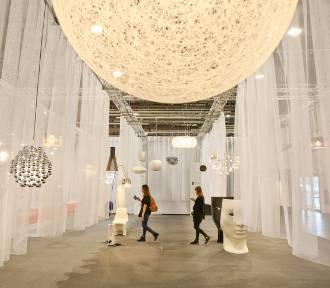 Targi Wnętrz i Designu, Warszawa 2019. Oryginalne wzory, światowe premiery i prezentacje nadchodzących