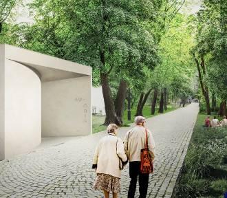Zwarta bryła, zakrzywiona ściana i żywe drzewo na patio – czy w Łazienkach Królewskich stanie nowy