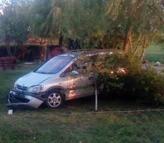 Pijany kierowca opla wjechał do przydrożnego ogrodu