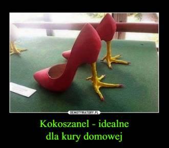 Najdziwniejsze buty świata. Musicie je zobaczyć! (ZDJĘCIA)