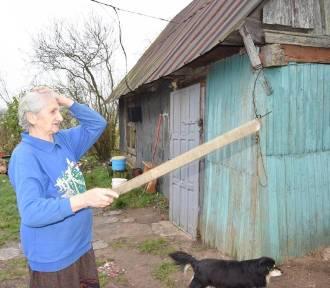 Gmina Nowinka. Ruszyła zbiórka pieniędzy na rzecz 79-letniej pani Leokadii