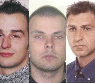 Poszukiwani przestępcy z woj. lubelskiego. Widziałeś ich? cz. IV (ZDJĘCIA)