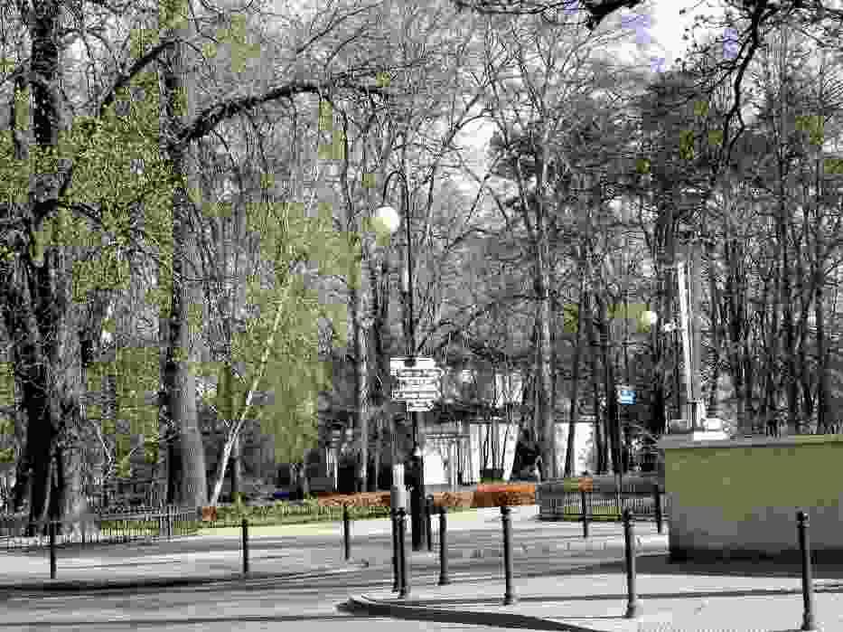 Tuż za Grand Hotelem na północ (w stronę Gdyni) rozciąga się Park Północny