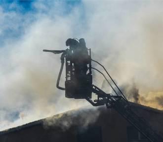 Pożar w suszarni ziarna w Szarleju pod Kruszwicą
