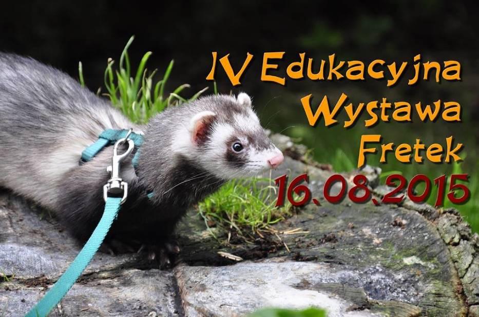Wystawa Fretek w Nowym Zoo w Poznaniu w niedzielę