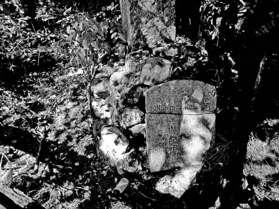 Miejsce pochówku barona Wilhelma von Rosenberg - Nowa Wieś