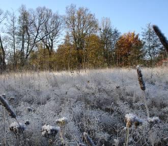 Zimowy spacer w Lubelskiem? 10 pomysłów na weekend