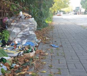 Śmieci w Oleśnicy antywizytówką miasta. Tym razem odpady zalegają na ul. Wrocławskiej