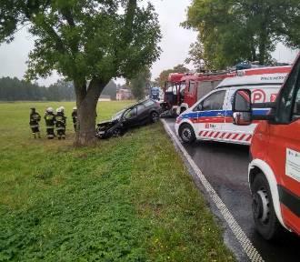 Śmiertelny wypadek w powiecie pajęczańskim. Zginął 17-letni pasażer volkswagena [FOTO]