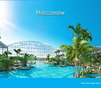 Park of Poland. Baseny, zjeżdżalnie i tropikalna wyspa. Wodne miasteczko pod Warszawą [WIDEO]