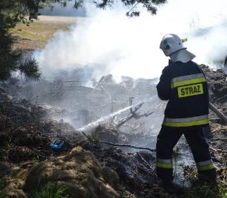W hydrantach zabrakło wody do gaszenia lasu. Wiatr uratował sytuację