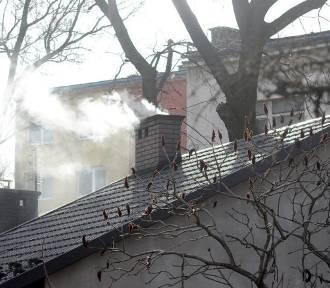SMOG: Powietrze jedno z najgorszych w Europie