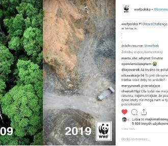 Tak Ziemia zmieniła się przez ostatnie 10 lat!