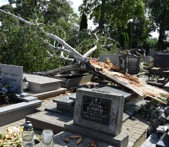 Cmentarz w Wieluniu po nawałnicy. Połamane drzewa, zniszczone pomniki FOTO, WIDEO
