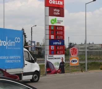 Ceny paliw na gnieźnieńskich stacjach. Drogo czy tanio?