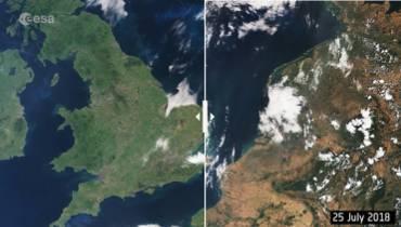 39b2c40044 Szokujące zdjęcia satelitarne ujawniają prawdę! ZOBACZ jak gorące lato  wpłynęło na krajobraz
