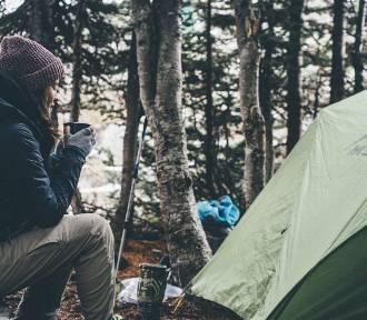 Survival i bushcraft. Będziesz mógł nocować na dziko w państwowych lasach!