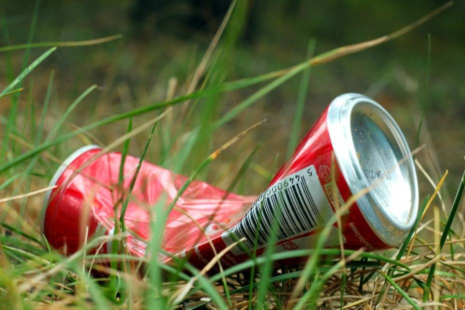 <center>Codziennie podnieś z ziemi jeden śmieć i wyrzuć go do odpadów segregowanych: #podnieśJeden</center>