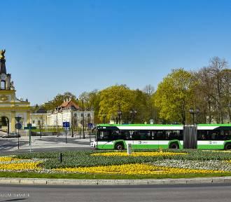 Chcesz zobaczyć nowe autobusy? Przyjdź na Rynek!