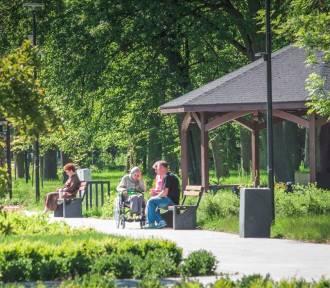 Park miejski w Starogardzie Gdańskim liderem dostępności ZDJĘCIA