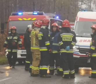 Śmiertelny wypadek na trasie Sulmierzyce-Odolanów [ZDJĘCIA]