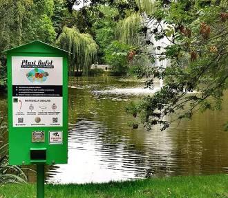 Ptasie bufety pojawiły się w Parku Miejskim. ZDJĘCIA