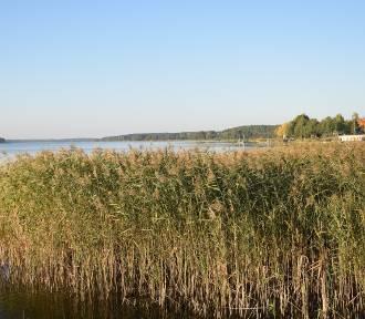 Tak wygląda złota polska jesień w gminie Chojnice nad Jeziorem Charzykowskim. Zdjęcia