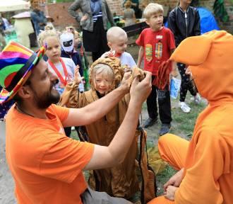 4. Festiwal Pomarańczowego Cylindra w Toruniu [ZDJĘCIA, PROGRAM IMPREZY]