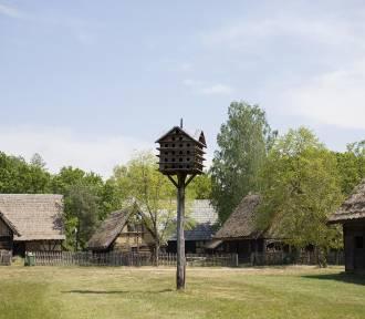 Znów możemy odwiedzać zielonogórski skansen!